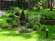 Предлагаем полный комплекс услуг по ландшафтному дизайну