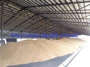 Строительство ангаров для хранения зерна,  сена,  кормов,  изготовление.